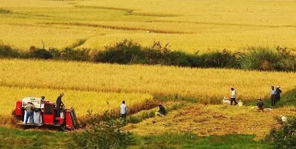 【政策資訊】北京首宗農村集體建設用地入市,農村集體經營性建設用地